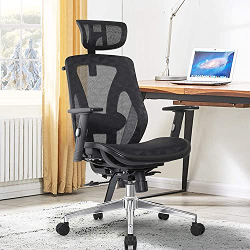 Allguest Ergonomic Adjustable Office Chair with Adjustable Lumbar Support-High Back with Mesh Seat Cushion-Adjustable Head-Arm Rests,Seat Height-Reclines AG-8015MH