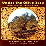 Image of Under the Olive Tree