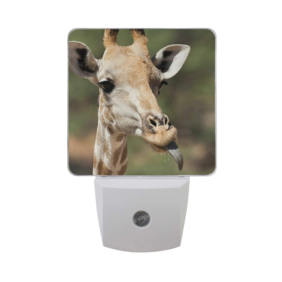 Night Light What Color is Giraffe's Tongue Led Light Lamp for Hallway, Kitchen, Bathroom, Bedroom, Stairs, DaylightWhite, Bedroom, Compact