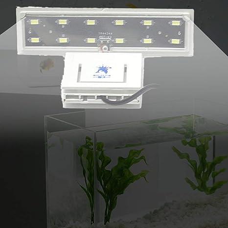 Footprintse Acuario de Alto Brillo Lámpara de Clip Flexible Tanque de Peces Sobre la Cabeza Acuario