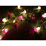 Sunniemart 20 LED Warm White String Light Battery Operated Mushroom Fairy Lights for Christmas, Wedding, Party Decoration