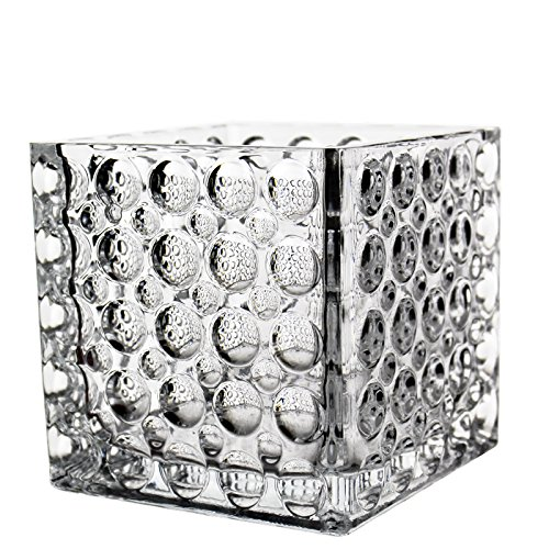 "CYS EXCEL Cube Vase, Crystal Clear Glass Vase, Vase For Decor, Vases For Flowers, Multiple Size Available (1, 6""-D)"