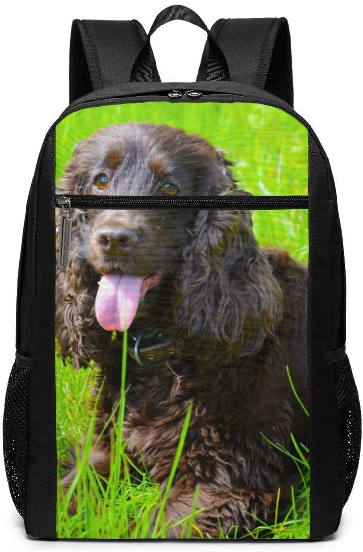 Irish Water Spaniel Multiuses Fation Backpacks School Bookbag Shoulder Bag Casual Daypack Laptop Bag 17 Inch Irish Water Spaniel 1