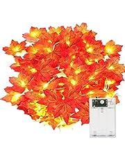 Yizhet Łańcuch świetlny jesienna girlanda z liści, 3 m, 20 diod LED, jesienna girlanda, liść klonu, łańcuch świetlny na jesień, idealny na dożynki, Halloween