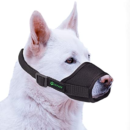 Chewing and Barking ILEPARK Dog Muzzle with Breathable Mesh Cover and Durable Nylon S,Green Soft Adjustable Dog Muzzle to Prevent Biting