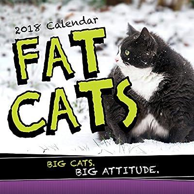 2018 Fat Cats Wall Calendar
