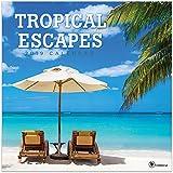 2019 Tropical Escapes Wall Calendar