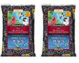 buy Pennington Select Black Oil Sunflower Seed Wild Bird Feed, 20 lbs (2 Pack) now, new 2019-2018 bestseller, review and Photo, best price $28.95