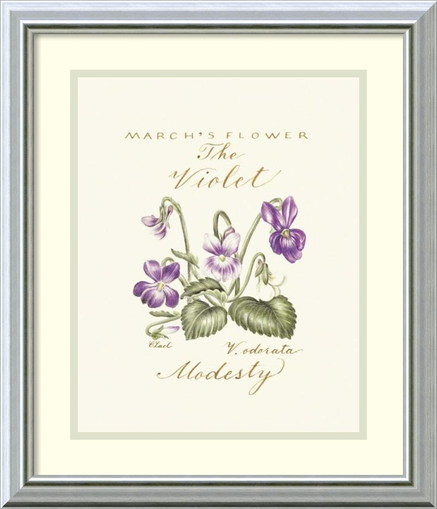 Framed Art Print 'March's Flower, The Violet' by Constance Lael
