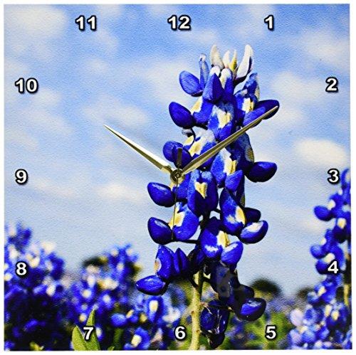 Cheap 3dRose dpp_94453_2 Bluebonnets, Freyburg, Texas-US44 FVI0019-Franklin Viola-Wall Clock, 13 by 13-Inch