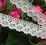 10 Meters Cotton Crochet Cluny Lace Edge Trim Ribbon 2.5 cm Width Vintage Ivory Cream Edging Trimmings Fabric Embroidered Applique Sewing Craft Wedding Dress DIY Cards Clothes Hats Embellishment