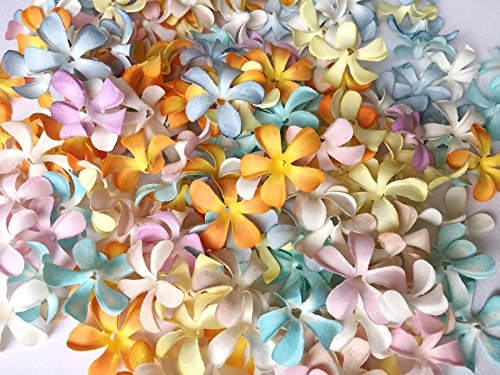 35 Mm Pastel (ICRAFY 150 Die cut Assorted Hawaiian Plumeria Frangipani Flower Mulberry paper Pastel Tone Heads - 3.5 cm. - Artificial Flowers Head Fabric Floral Supplies 150 Pcs. Size 35 mm. Pastel Color)