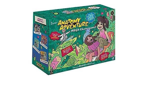 Amazon.com : Know Yourself The Digestive System Anatomy ...