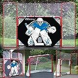EZ Goal 2 in. Folding Steel Hockey Goal with Backstop - Shooter Tutor & Targets – (Lifetime Warranty On Goal Net)