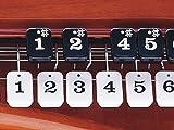Suzuki Taishogoto Kohaku CHK-1 Amber Soprano with