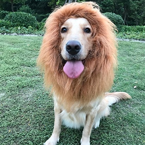 Bayppy Realistic and Funny Lion Mane for Dog Lion Costume for Medium and Large Dogs with Ears and Tail Adjustable Comfortable Lion King Wig Halloween Costumes Golden Retriever Light Brown Dog Outfit -