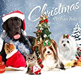 Dog Hair Bows - Christmas Dog Hair Bows - Beirui Bling Pet Grooming Accessories 20pcs