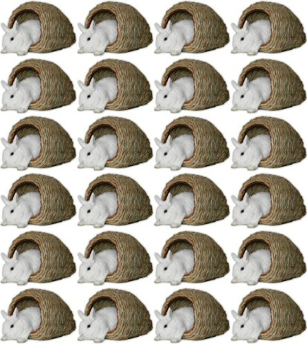 Peter's Natural Woven Grass Cave 24pk