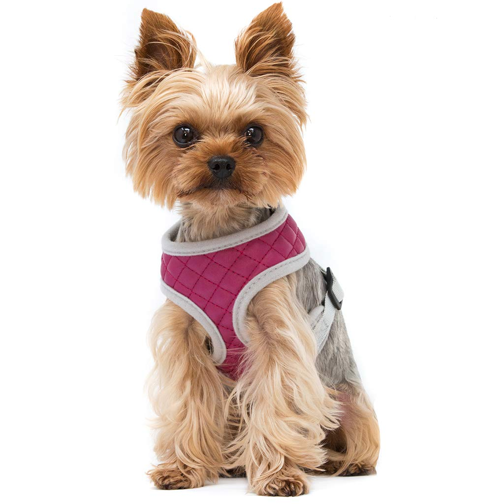 ZuGoPet Quilted Harness (Extra Small 11''-13'', Pink) by ZuGoPet