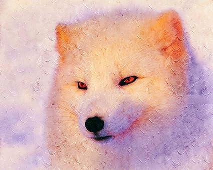 Advlook Pintando Adultos Por Numero Zorro ártico Animal