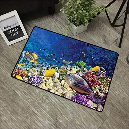 (Square Door mat W31 x L47 INCH Ocean,Untouched Wild Aquatic World with Corals Exotic Fishes Red Sea,Navy Blue Lavender and Yellow Easy to Clean, no Deformation, no Fading Non-Slip Door Mat Carpet)