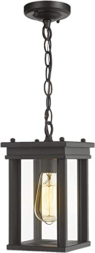Zeyu Outdoor Hanging Lantern, Exterior Pendant Light Fixture for Hallway Porch, Black Finish with Clear Glass, 02A30H BK