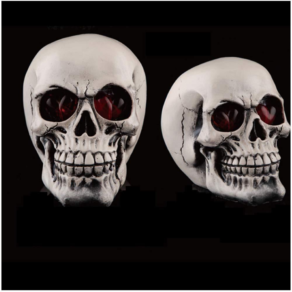 Amazon Com Human Skull Halloween Christmas Decorations
