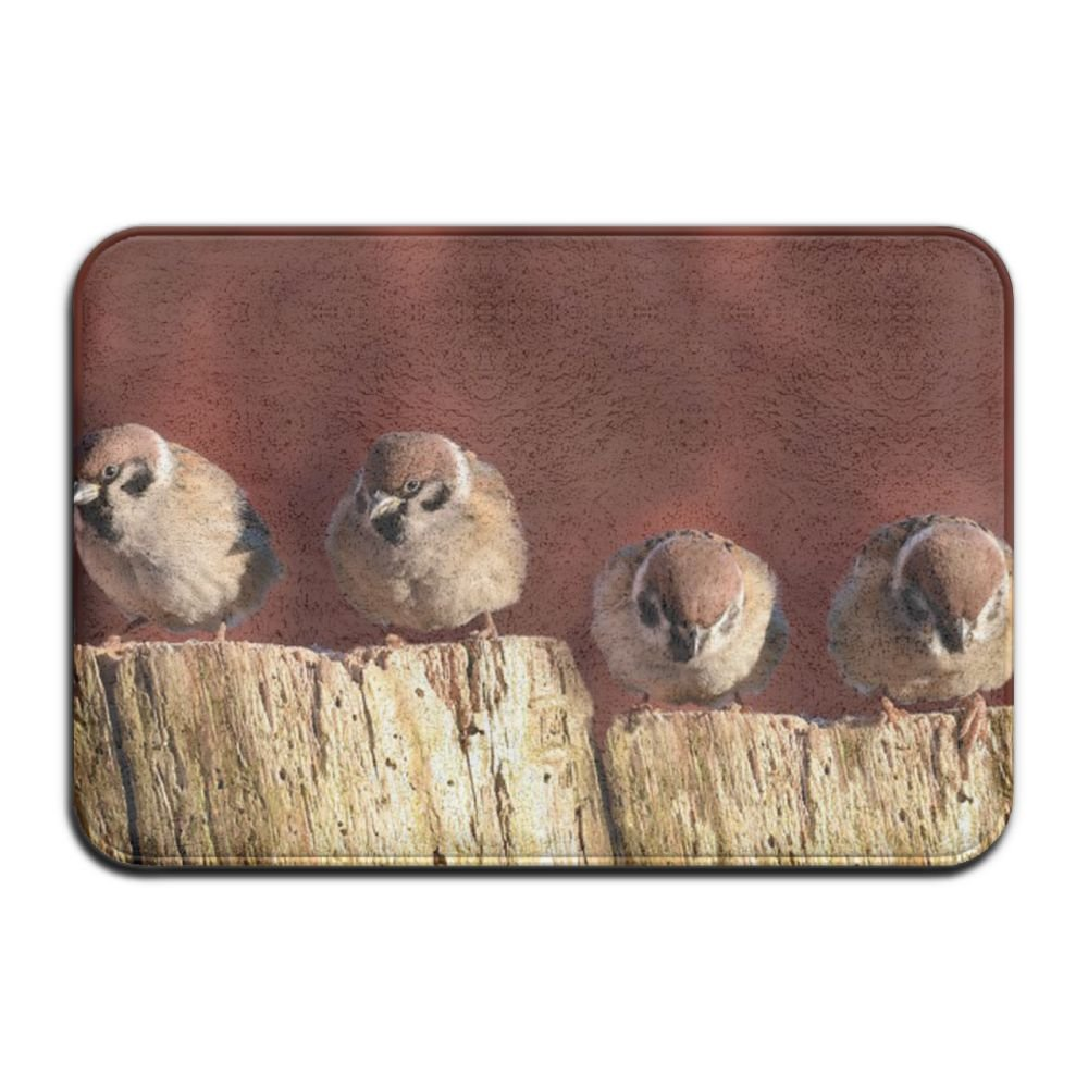 PINGDENG Floor Mat Funny Custom Doormat With Non-slip Rubber Backing Birds-sparrows-animal-animals-birds-bird-photo-gallery-736x414 Home Decor Vintage 23L X 15W Mother's Day Gift