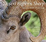 img - for Desert Bighorn Sheep: Wilderness Icon book / textbook / text book