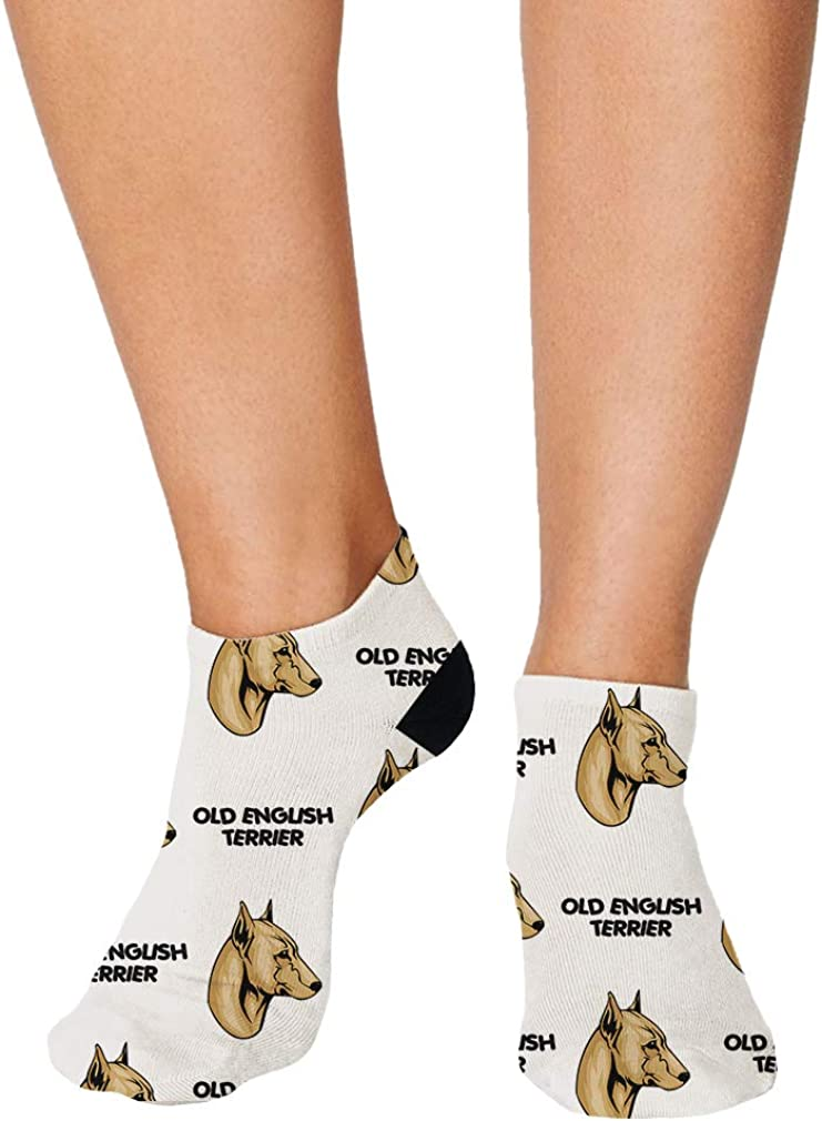 Old English Terrier Dog Breed Pattern #1 Men-Women Adult Ankle Socks