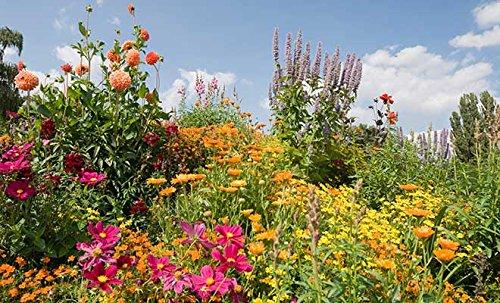 GroGreen Abono Orgánico Bio-Fertilizante Universal 4-3-2+1% Mg + 9% Ca, 7, 5 kg cubo Fertilizante universal 100% orgánico para el jardín, huerto y césped: ...