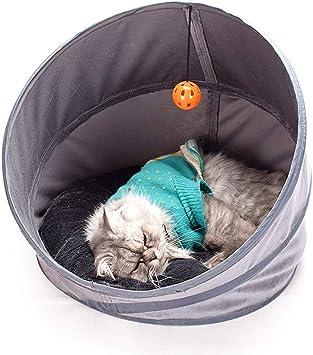 Die besten Katzentunnel zum Spielen | Haustiermagazin