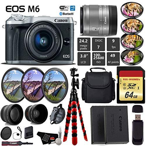Canon EOS M6 Mirrorless Digital Camera  + EF-M 15-45mm Lens