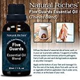 Five-Guards-Synergy-Essential-Oils-Blend-30ml-Therapeutic-grade-Thieves-essential-oil-by-Natural-Riches-Compare-to-Young-Livings-Thieves-Do-Terras-ON-GUARD-blend