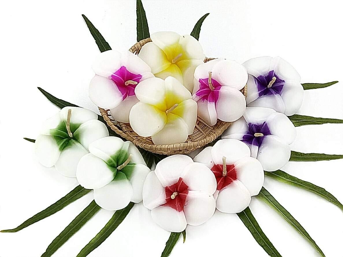 NAVA CHIANGMAI Plumeria Flower Floating Candles 10 pieces / 1 Set by NAVA CHIANGMAI (Image #5)