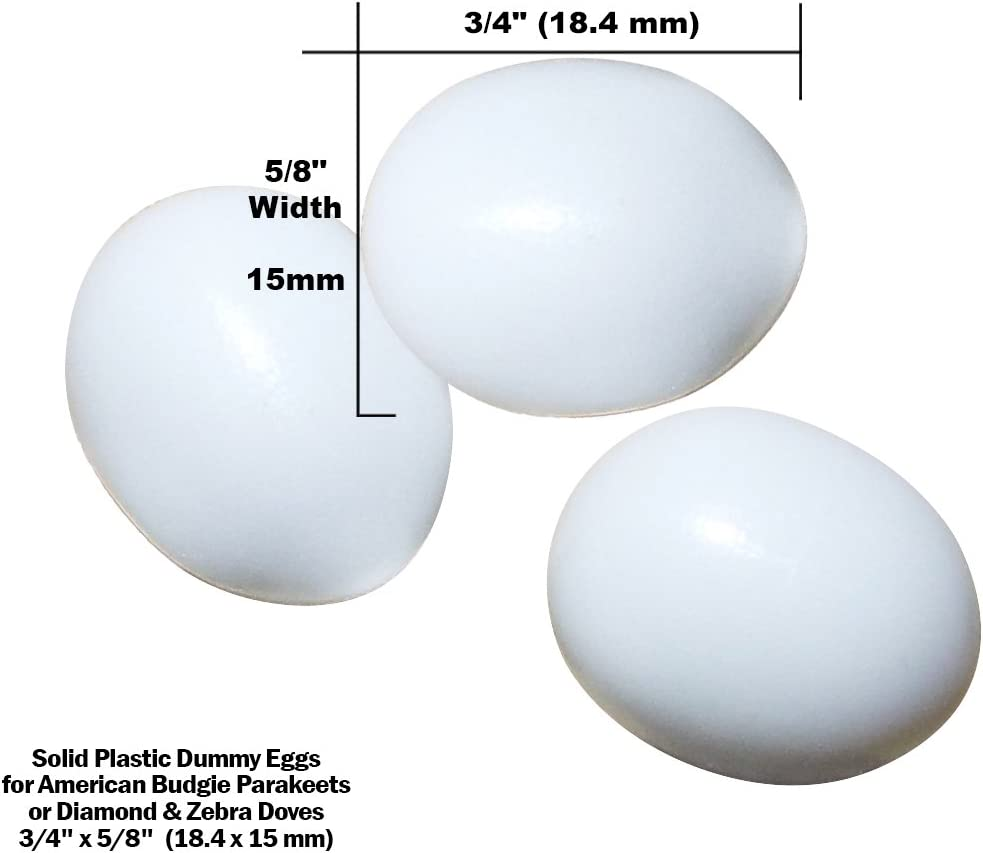 "DummyEggs Stop Egg Laying! Fake Bird Eggs: Am Budgie Parakeet (Budgerigar Budgy) Parrotlet or Diamond Dove. White Solid Plastic Realistic 3/4"" x 5/8"" 18.4x15mm Eggs or Kits"