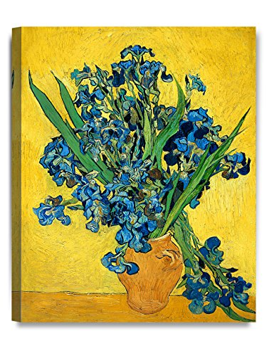 (DECORARTS - Irises Vase Flower, Vincent Van Gogh Art Reproduction. Giclee Canvas Prints Wall Art for Home Decor 20x16)