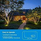 DEWENWILS 60 Watt Outdoor Low Voltage Transformer