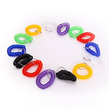 Amazon.com: Little mouse ® Assorted Color Espiral de ...