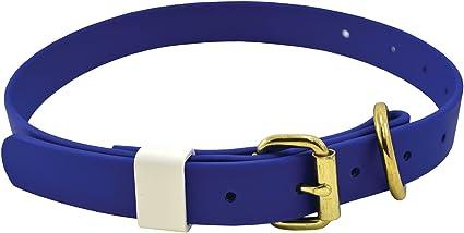 Classic Biothane Dog Collar