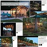 Lemontec Commercial Grade Outdoor String Lights