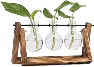 Hyindoor Florero de Vidrio para Planta Hidropónica Florero de Bulbos de 3 Jarrones de Bombilla Cristal con Soporte de Madera de Escritorio