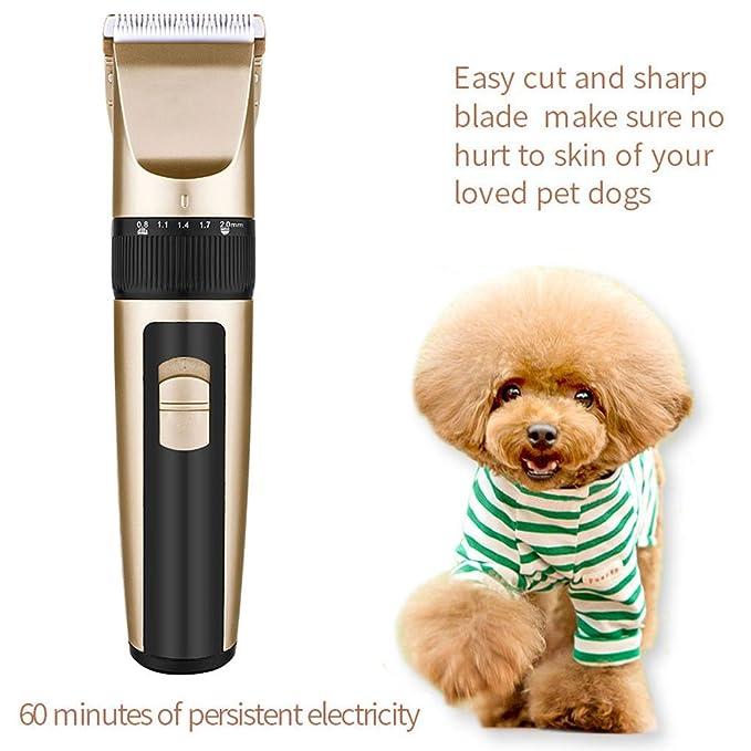 ZRN [G42] Cortapelos para el aseo de mascotas, de bajo ruido y baja vibración Cómodo y fácil de usar afeitadora para el cuidado de mascotas, para animales ...