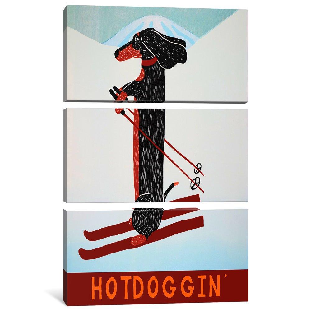 60 x 40//0.75 Deep iCanvasART 3 Piece Hotdoggin Canvas Print by Stephen Huneck