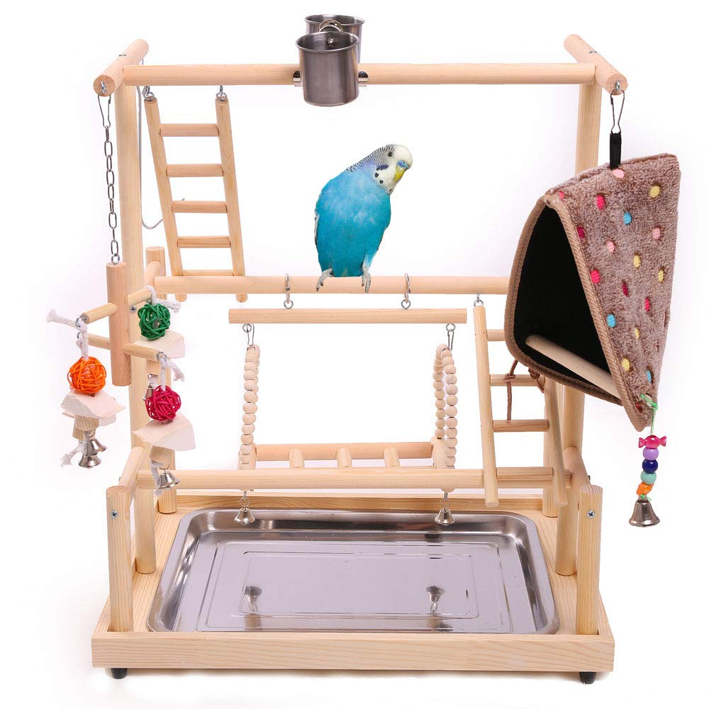 QBLEEV Bird Playground Perch, Parrot Training Stand,Play Gym Tabletop with Nest Stainless Steel Tray & Feeder Cups Dishes,Metal Food Skewer Ladder Swing Toy for Small Birds and Animals Budgies Parakee by QBLEEV