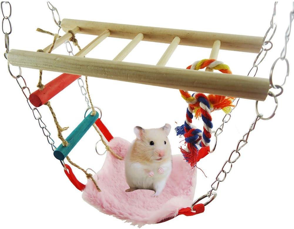 dontdo Hamaca Colorida Mini casa Mascota Pájaros Loros Ardilla Colgante Cama Columpio Escalera Juguete Cerebro Juego Herramienta de Entrenamiento: Amazon.es: Productos para mascotas