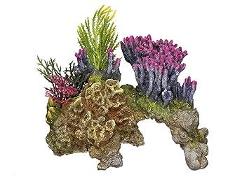 Nobby Coral Piedra con plantas acuario adornos, 15,5 x 9 x 10,5 cm: Amazon.es: Productos para mascotas