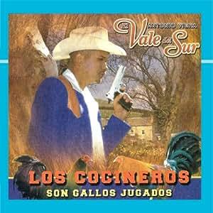 Antonio Viera El Vale Del Sur - Los Cosineros Son Gallos