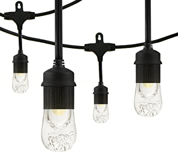 Amazon.com: Enbrighten Café LED String Lights, 48-Foot, 24 ...