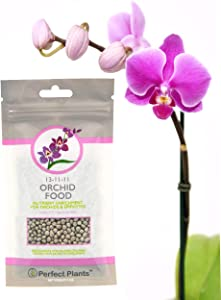 Orchid Food by Perfect Plants - Resealable 5oz. Bag - Slow Release Fertilizer Pellets - Suitable for All Orchid Types - Nutrients for a Healthy Phalaenopsis